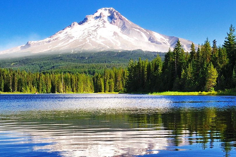 Oregon Tenant-Landlord Law